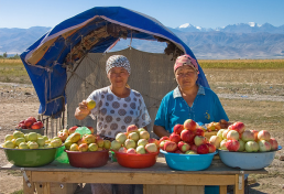 Selling apples at Issyk-Kul