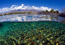 Diving in Issyk Kul lake